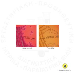 MAC-CONKEY-1-100ml--BIOPREPARE-ΤΟΛΙΟΠΟΥΛΟΣ-ΔΙΑΓΝΩΣΤΙΚΑ