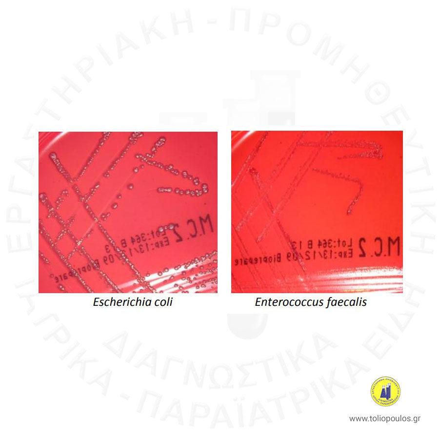 MAC-CONKEY-2-BIOPREPARE-ΤΟΛΙΟΠΟΥΛΟΣ-ΔΙΑΓΝΩΣΤΙΚΑ