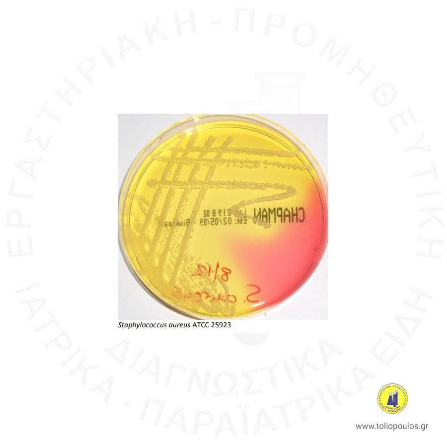 MANNITOL-SALT-AGAR-(CHAPMAN)-BIOPREPARE-ΤΟΛΙΟΠΟΥΛΟΣ-ΔΙΑΓΝΩΣΤΙΚΑ