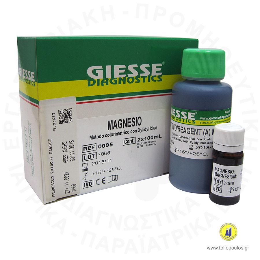magnesium-giesse
